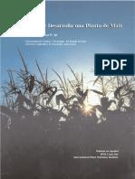 Como Se Desarrolla Una Planta de Maiz