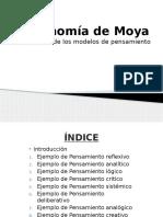 Taxonomía de Moya