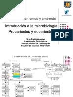 Microorganismos y ambiente