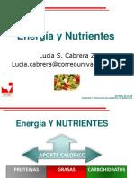 Energia y Nutrientes