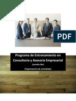 programación entrenamiento consultores