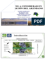 Aspectos a considerar en la nutrición del arandano.pdf