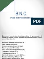 B.N. Punto de Inyección