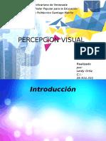 PERCEPCION VISUAL.pptx