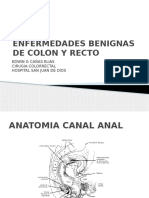 22 Patologia-de-Colon-y-Recto.pptx