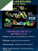 Bases moleculares de la vida_BE_gus_2.ppt