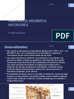 VARICES DE MIEMBROS INFERIORES may15.pptx