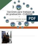 Opciones de Trabajos Para Graduacion