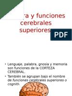 Semiología del Lenguaje