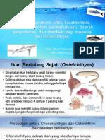 Zoologi Vertebrata Bab 7. Morfologi, Anatomi, Sifat, Karakteristik Osteichthyes