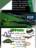 Zoologi Vertebrata Bab 9. Reptil