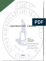 Informe nº1.docx