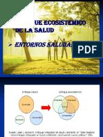 enfoque ecosistemico de la salud