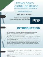 Tecnológico Nacional de México Presentacion Yogurt