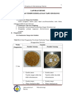 laporan praktikum mikrobiologi tempe dan tape