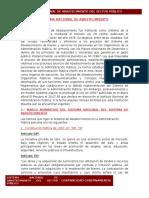 SISTEMA NACIONAL DE ABASTECIMIENTO.docx