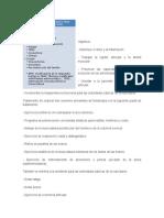 Monografia Rehabilitacion en Ar