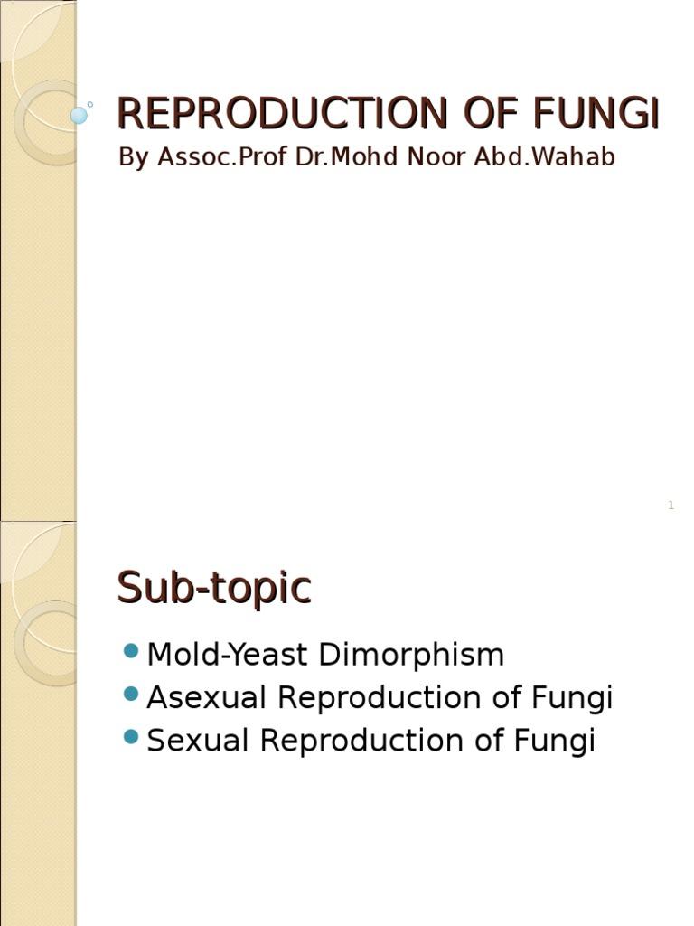 Arthrospores asexual and sexual reproduction