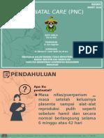 Postnatal Care (Pnc)
