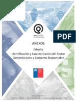 Meft Chile - Identificación y Caracterización Del Sector Comercio Justo y Consumo Responsable 2015 - Anexos