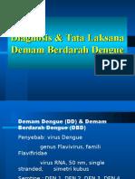 5. Tata Laksana DBD Rev