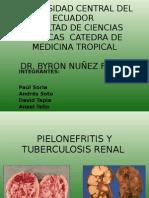 Pielonefritis y Tb Renal