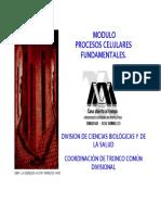 ModuloPCF