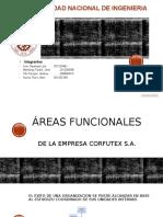 Análisis Interno CORFUTEX V1