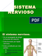 SISTEMA NERVIOSO 5.ppt
