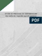 Fernando Costa Gestao de Processos de Cooperativismo