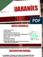 GUARANIES.pptx