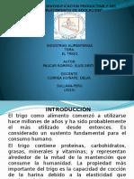 Trigo Diapositivas