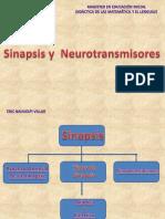 Sinapsis-neurotransmisores Eric Nahuelpi Villar