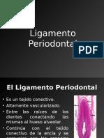 Clase 3 Ligamento Periodontal