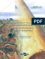 A Gueroba (Syagrus Oleracea Becc.) Nas Comunidades Rurais II Sistemas de Producao e Avaliacao Economica
