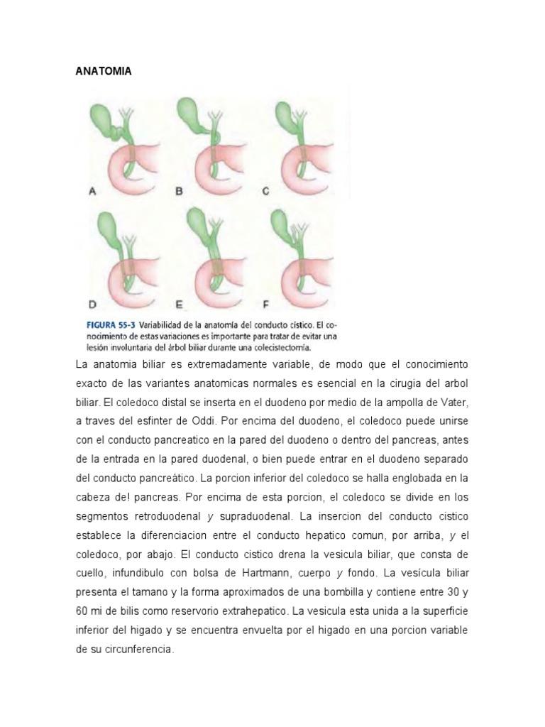 colecisititis