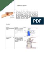 Patologías y Ortesis