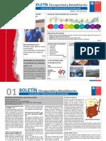 Boletin DDR Discapacidad