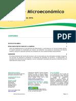 Informe Microeconomico Nro 34
