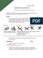identificationofmacromoleculeslab - lab 1