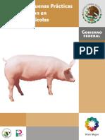 Manual Porcinos 2008 Sagarpa