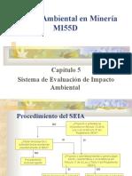 APUNTES - 5.-SISTEMA EVALUACION IMPACTO AMBIENTAL.ppt