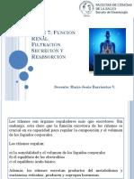 Clase 7 Función Renal