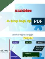 The Acute Abdomen_English Ver