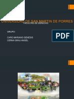 UNIVERSIDAD DE SAN MARTIN DE PORRES semiknario de tesis esposicion de de lunes.pptx
