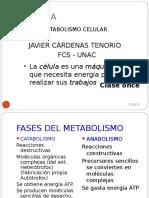Biologia Respiracion Celular (1)
