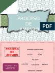 Proceso de Amparo