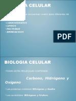 _Biomoléculas.ppt_