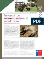 Enterotoxemia en Ovinos FICHA-08-REMEHUE