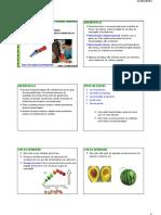 Frutas e Hortaliças [Aula Nº 03]